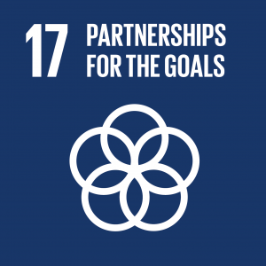 Sustainable Development Goal 17 partnership for the goals